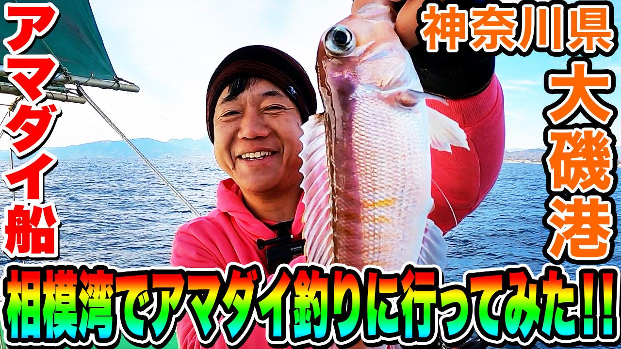 相模湾でアマダイ釣りに行ってみた!! 神奈川県 大磯港