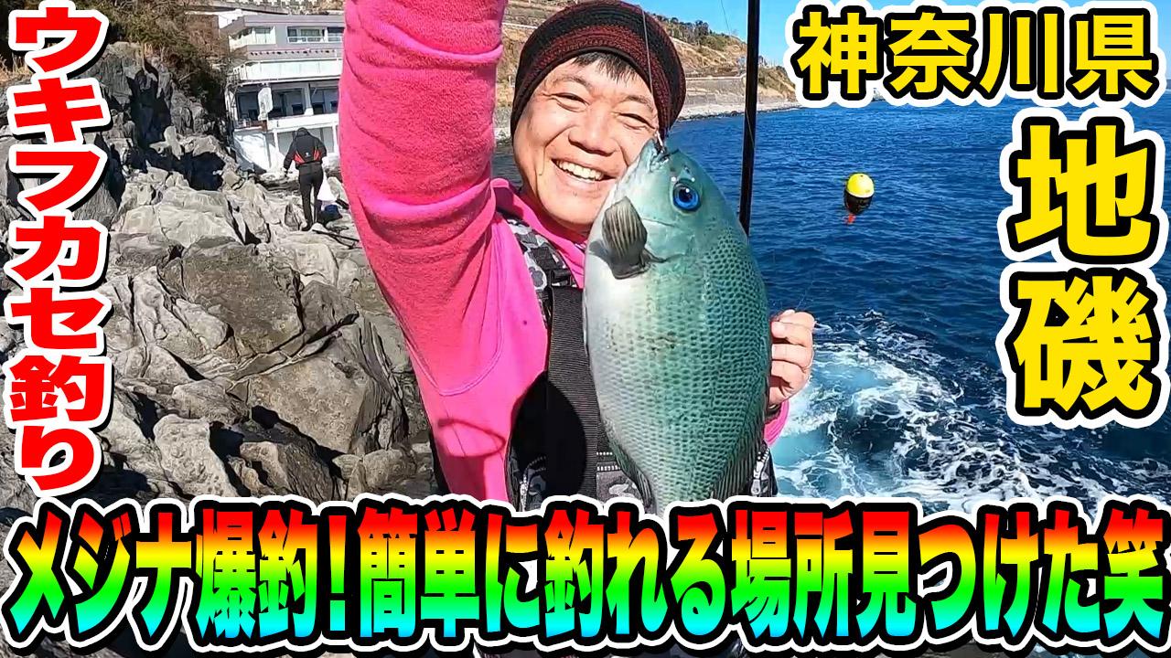 メジナ爆釣!簡単に釣れる場所見つけた笑